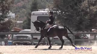 032S Frankie Thieriot on Chatwin Preliminary Show Jumping Woodside August 2014