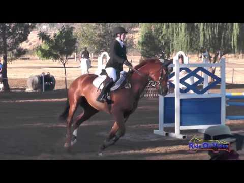 446S Katherine Hill On The Pied Piper JR Training Show Jumping Twin Rivers Ranch Sept. 2016