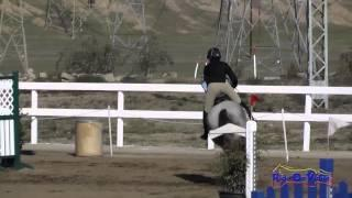 104S McKenzie Miller on Fire and Rain Open Novice Show Jumping FCHP November 2014