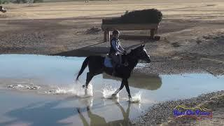 164XC McKenna Winters on Saved by the Bella JR Novice Cross Country Twin Rivers Ranch September 2017