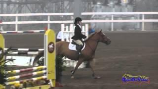145S Jessica Flores on Kleary's Mighty Pip JR Beginner Novice Show Jumping FCHP November 2014
