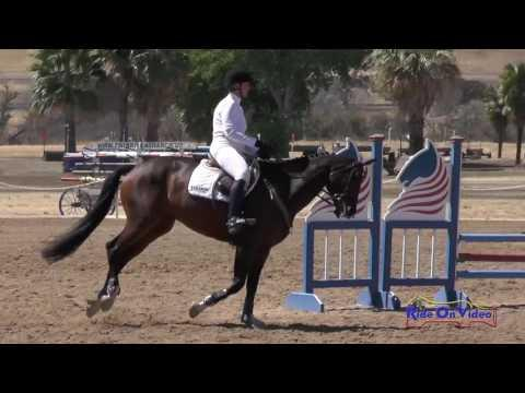 300S Heidi Powers On Wesley SR Beginner Novice Show Jumping Twin Rivers Ranch Sept. 2016