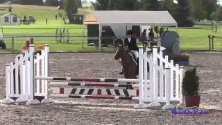 426S Anna Weatherford On Thaddaeus SR Novice Show Jumping The Event At Rebecca Farm July 2015