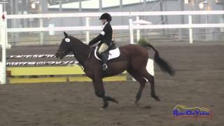 186S Sarah Myers on Almudin SR Beginner Novice Show Jumping FCHP November 2014
