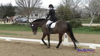 286D Jordan Linstedt on Finnegan Open Beginner Novice Dressage Twin Rivers Ranch March 2020