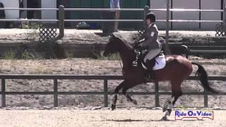 136S Laurel Glass on Checkpoint Charlie Training Horse Show Jumping Woodside August 2014