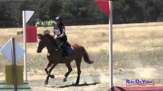 327XC Susan Miller On Spot On SR Beginner Novice Cross Country Woodside August 2015
