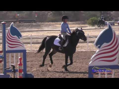 388S Hayden Brown On Standing Ovation Intro Show Jumping Twin Rivers Ranch Sept. 2016