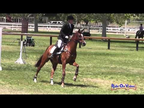 043S Lindsey Weaver On Sintra Preliminary Rider Show Jumping Galway Downs May 2014