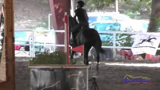 006E1 Stacia Lloyd on Zoey Beginner Novice Eventing Pacific Indoor Eventing October 2014
