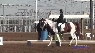 003D Nikki Ayers on Rubicon Intermediate Dressage Fresno County Horse Park Oct 2014