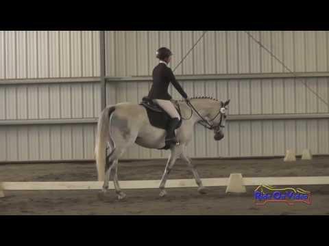 248D Kylan Maki On Fiat JR/YR Training Dressage Spokane Sport Horse HT May 2016