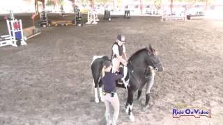 050J1 Jack Gaon on Little Croc Beginner Novice Jumping Pacific Indoor Eventing October 2014