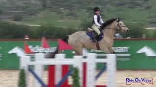 058S Kaitlin Dicks on Castleside Maguire Intro Show Jumping Galway Downs Feb. 2019