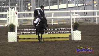 194S Rachel Harnish on Fix It Felix SR Beginner Novice Show Jumping FCHP November 2014