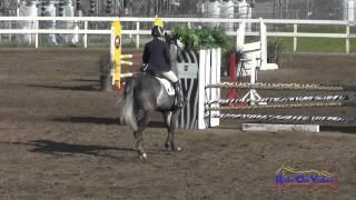 175S Bec Braitling on Cerne Abbas Open Training Show Jumping FCHP February 2015