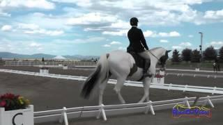 255D Marc Grandia On Ghost Flight SR Training Dressage The Event At Rebecca Farm July 2015