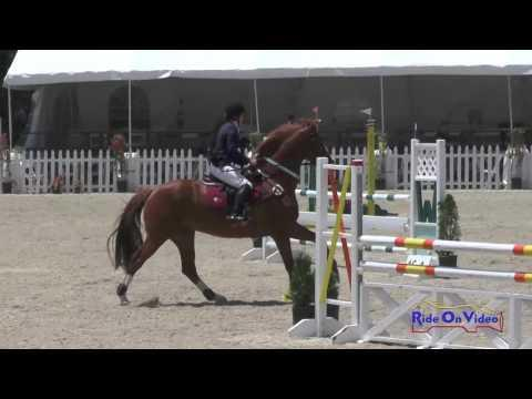 119S Tracy Alves On Romulus Preliminary Rider Show Jumping Woodside May 2016