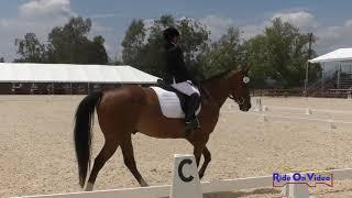 041D Jennifer Barron on Cisco Kid JR Beginner Novice Dressage Galway Downs May 2019