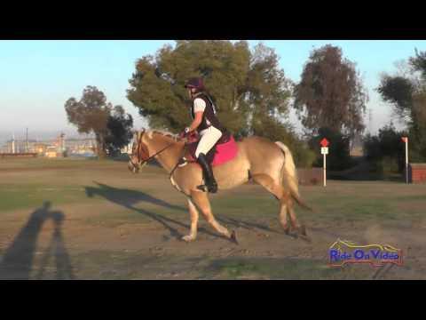 227XC Melissa Groom On Wiesenblume Intro Cross Country FCHP November 2015