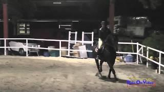 019E1 Gina Economou on Calidore Intermediate Eventing Pacific Indoor Eventing October 2014