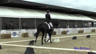 Woodside Preliminary Challenge May 2015 - DRESSAGE COVERAGE