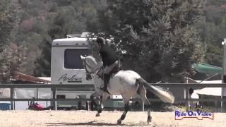 001S David Acord on Code of Conduct Intermediate Show Jumping Woodside August 2014