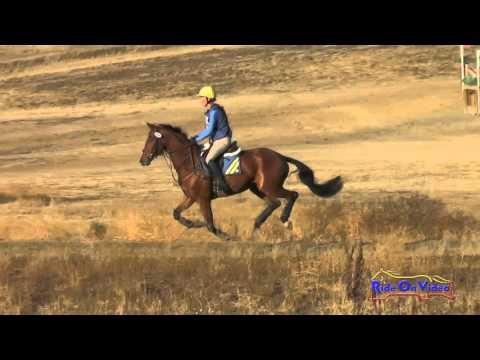 190XC Jolie Wentworth On So Cooley Open Training Cross Country Woodside Oct 2015