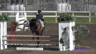 216S Tiffany Bennett on Mint Julep SR Novice Show Jumping FCHP February 2015