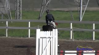219S Bec Braitling on Domina D'Revel Open Novice Show Jumping FCHP February 2015