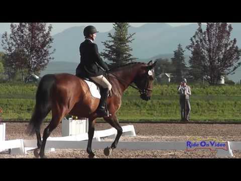 260D Paula Sweeney On Quick Trick SR Open Training Dressage Rebecca Farm July 2016