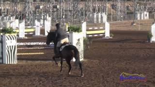002S Gina Economou on Calidore Intermediate Show Jumping Fresno County Horse Park Oct 2014