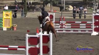 043S Kristen Merala on Tiki Tiki Tumbo CCI1* Show Jumping Galway Downs November 2014