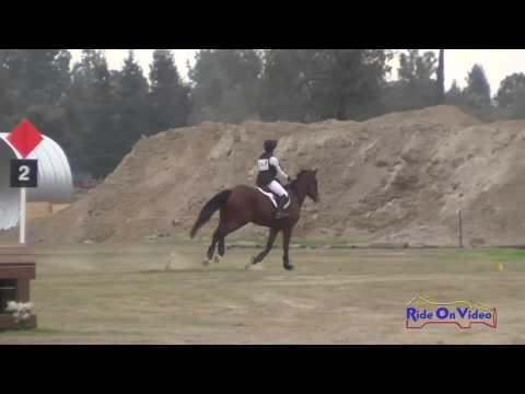 167XC Stefani Christieson On Jaxsom My Heart Open Beginner Novice Cross Country FCHP November 2016