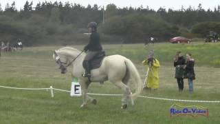 278D Anna Frank on FHF Frederic Open Novice Dressage Whidbey Island July 2017