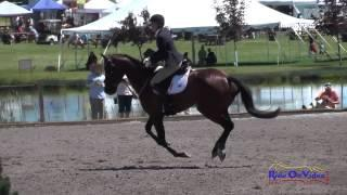 335S Kelsey Holmes on Heart of Gold SE JT Training Show Jumping The Event at Rebecca Farm July 2014