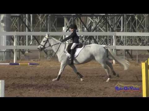160S Maeve Callahan On Lady Viking Intro Show Jumping FCHP October 2016