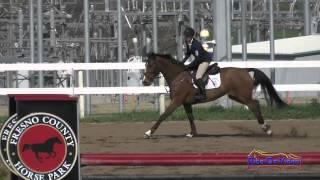 075S Robyn Fisher on Betawave Open Preliminary Show Jumping FCHP February 2015