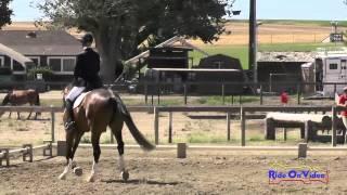 243D Jolie Wentworth On Peroni Open Beginner Novice Cross Country Shepherd Ranch June 2015