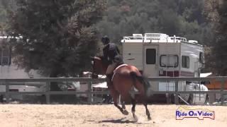 026S Erin Kellerhouse on Tiz When Preliminary Show Jumping Woodside August 2014