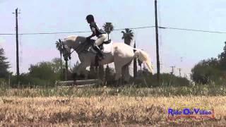 064XC Cheryl McCullough Beginner Novice Horse Cross Country Fresno County Horse Park April 2013