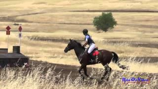 105XC Lindsay Rains On Releve' Open Beginner Novice Cross Country Camelot July 2015