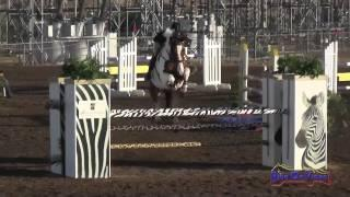 006S Erin Murphy on Athlone Travel On Intermediate Show Jumping Fresno County Horse Park Oct 2014