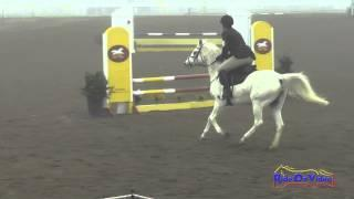030S Jessica Kaylee Flores on Princess Xyla Beginner Novice Show Jumping FCHP January 2015