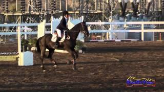 215S Mahari Blanks on Bartok SLR Intro Show Jumping FCHP November 2014