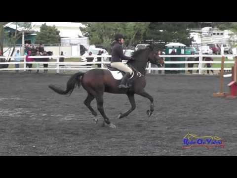 181S Meredith Magnuson JR/YR Novice Show Jumping Spokane Sport Horse HT May 2016