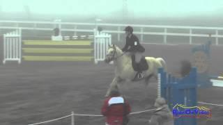 008S Kaila Flores on Star's Southern Charm Intro Show Jumping FCHP January 2015