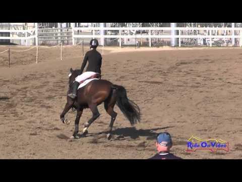 239S Katrina Moss On Appletini JR Novice Show Jumping FCHP November 2015