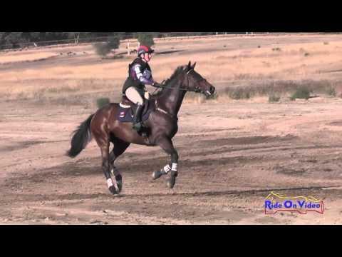 215XC Logan Bearden On Pleasant Soul Training Horse Cross Country Woodside Oct 2015