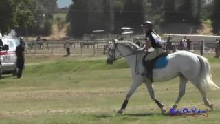 171XC Ella Corsi on Cash Me Out JR Intro Cross Country Shepherd Ranch June 2017
